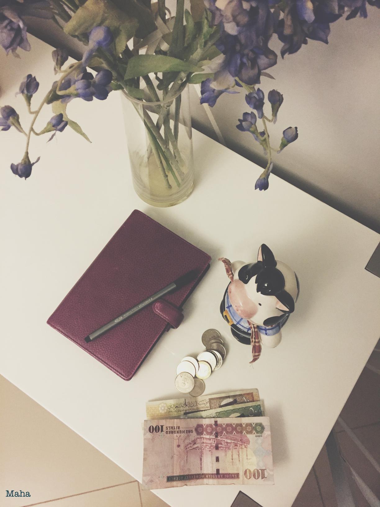 تنظيم المصاريف المالية