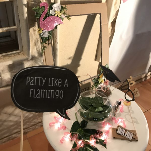 حفلة تخرجي بثيم الفلامينجو | Flamingo party