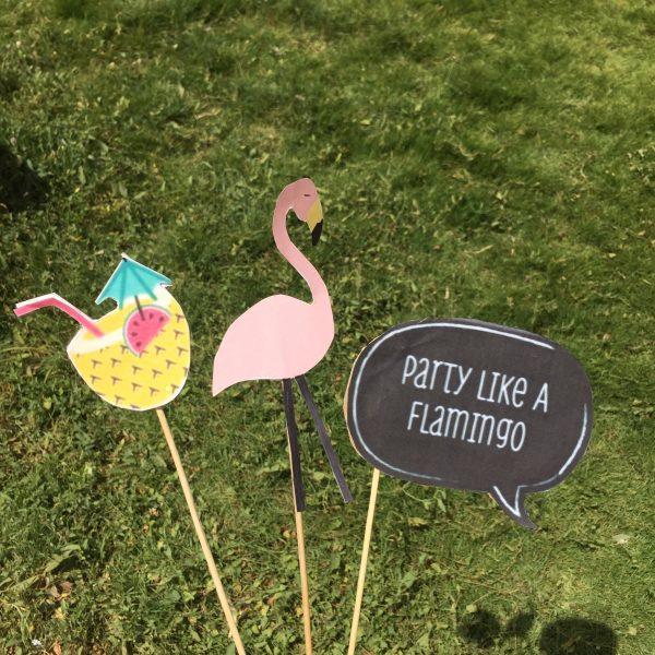 حفلة تخرجي بثيم الفلامينجو | Flamingo party